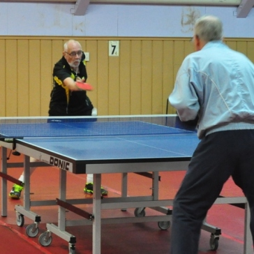 Over 60s pool play